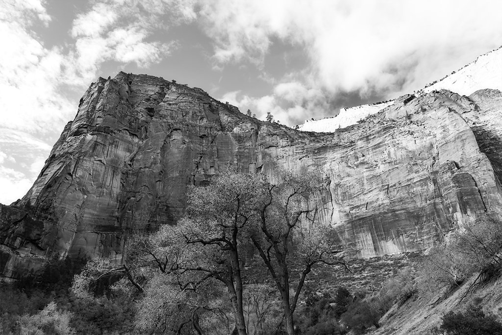 My Day in Zion #1